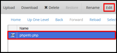 edit button at the top menu bar for the selected phpinfo file created
