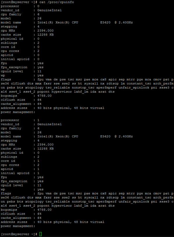 the CPU information on a Linux server screenshot